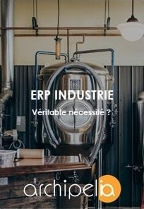 Archipelia Livre blanc ERP Industrie